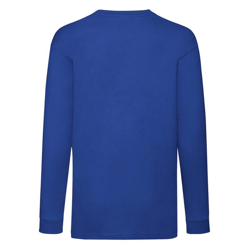 Laste T-särk Valueweight Long Sleeve T